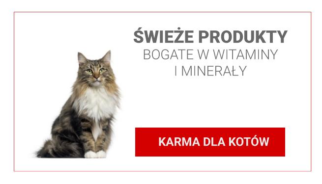 KARMA-DLA-KOTÓW