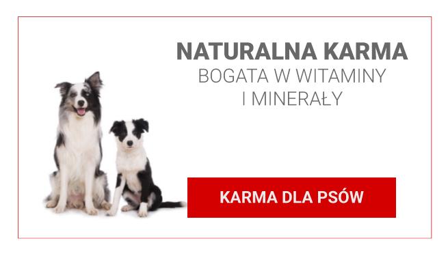 KARMA-DLA-PSÓW