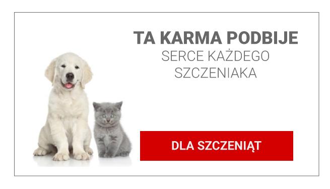KARMA-DLA-SZCZENIĄT